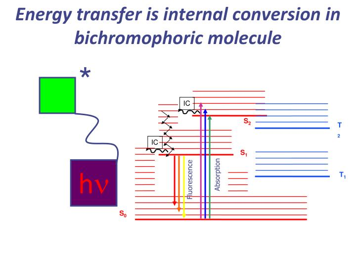 Energy transfer is internal conversion in bichromophoric molecule