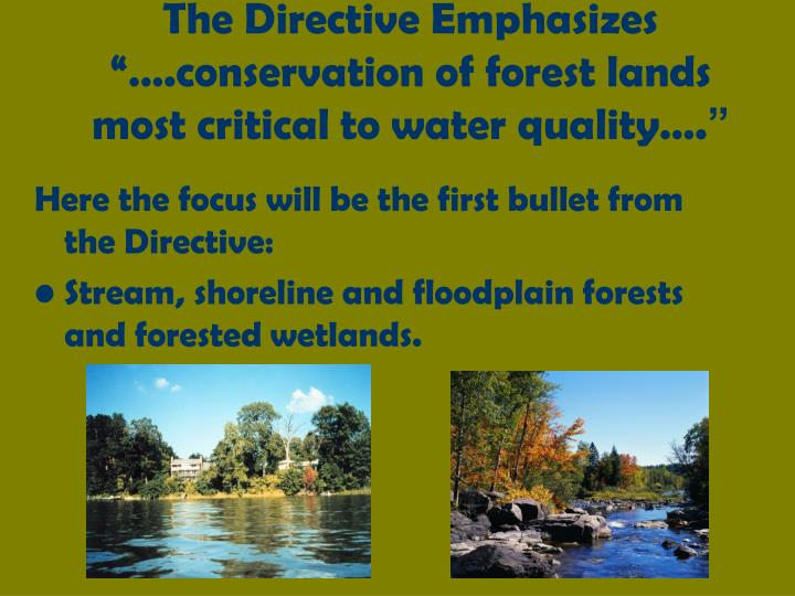 "The Directive Emphasizes ""….conservation of forest lands most critical to water quality…."