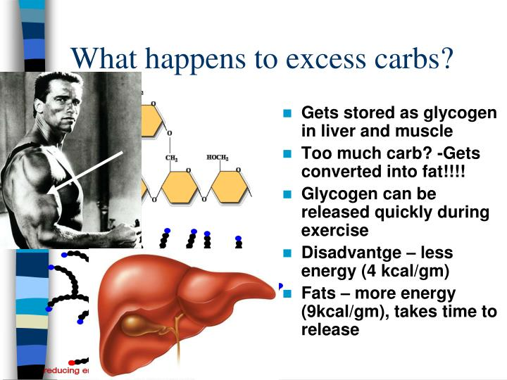 What happens to excess carbs?