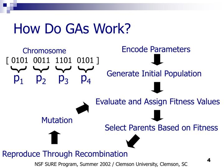 How Do GAs Work?