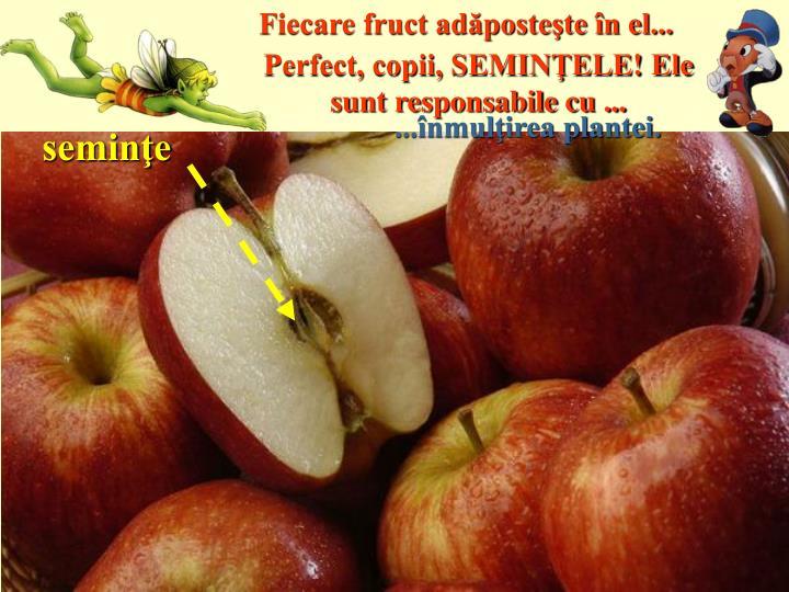 Fiecare fruct adăposteşte în el...