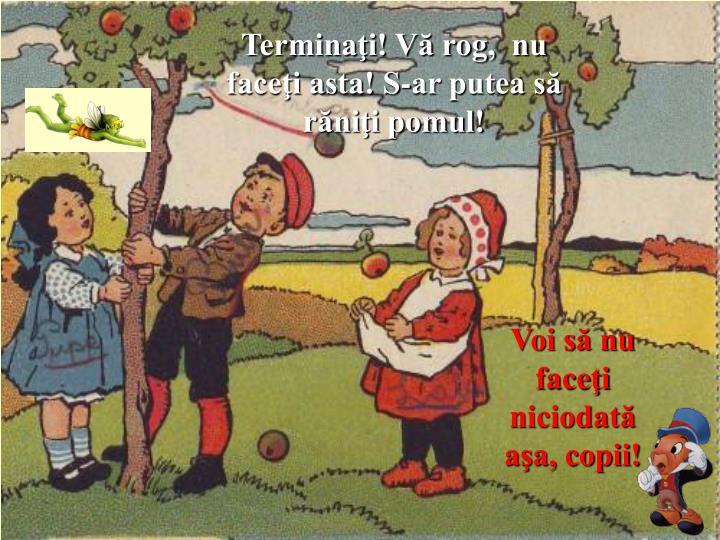 Terminaţi! Vă rog,  nu faceţi asta! S-ar putea să răniţi pomul!