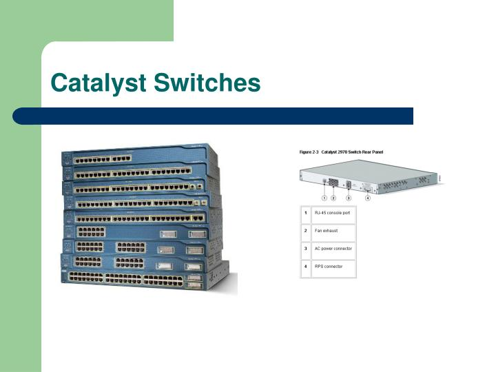 Catalyst Switches