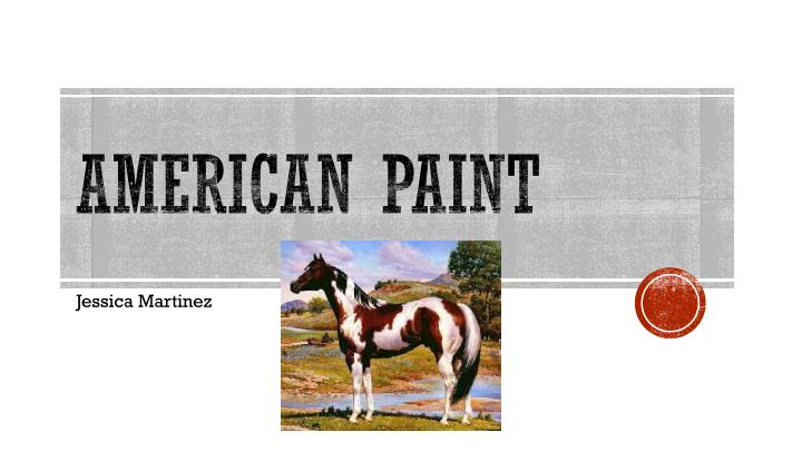 American Paint
