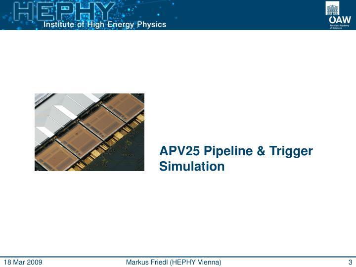 APV25 Pipeline & Trigger