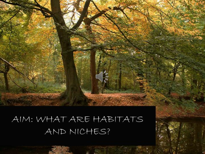 Aim: What are habitats and