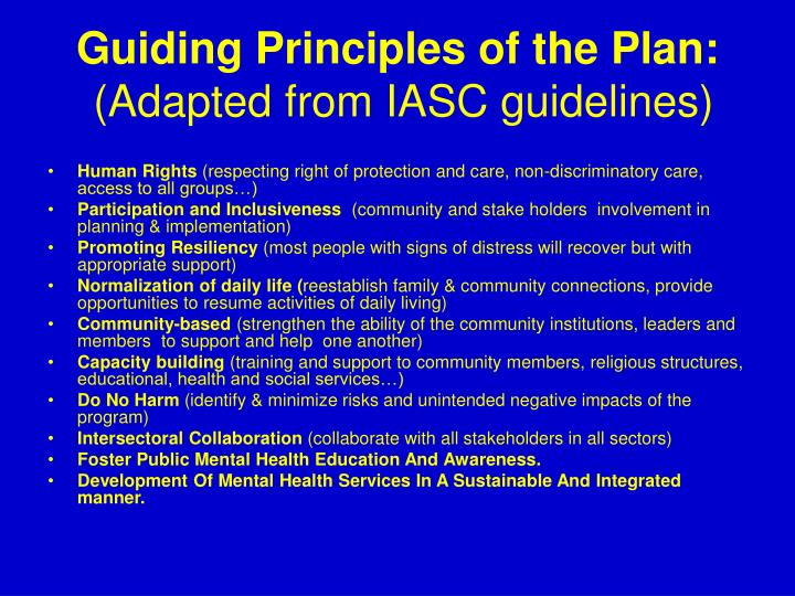 Guiding Principles of the Plan:
