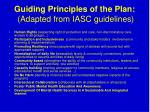 guiding principles of the plan adapted from iasc guidelines