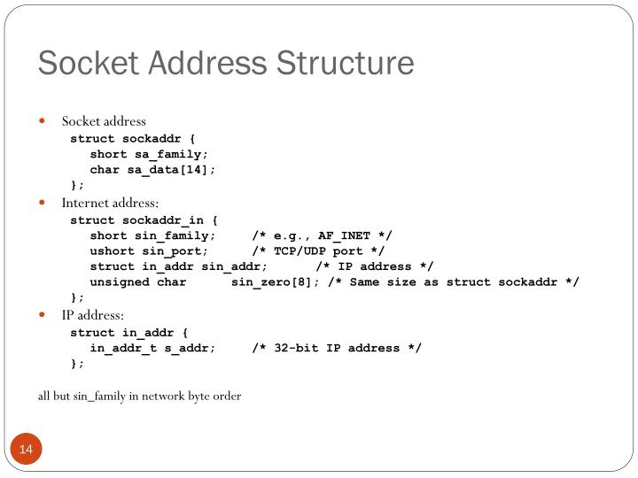 Socket Address Structure
