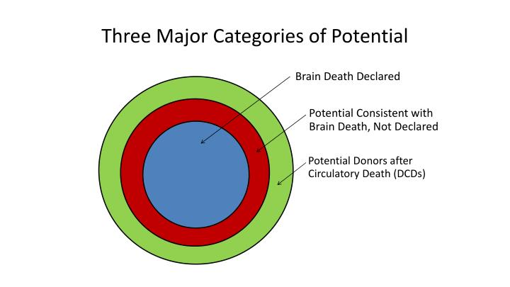Three Major Categories of Potential