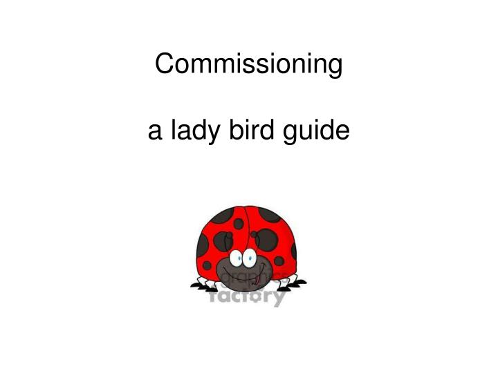 Commissioning a lady bird guide