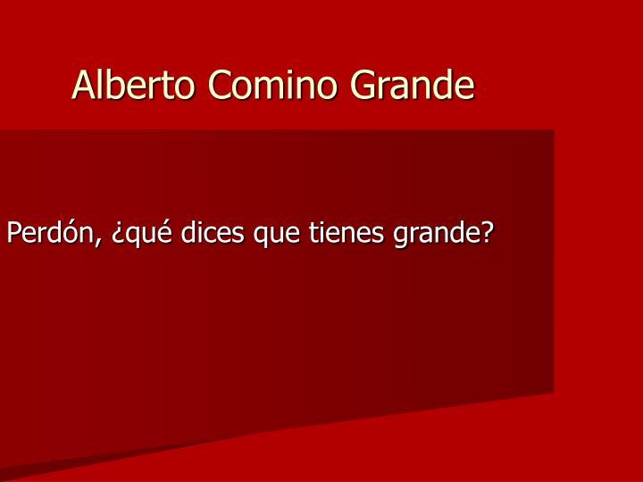Alberto Comino Grande