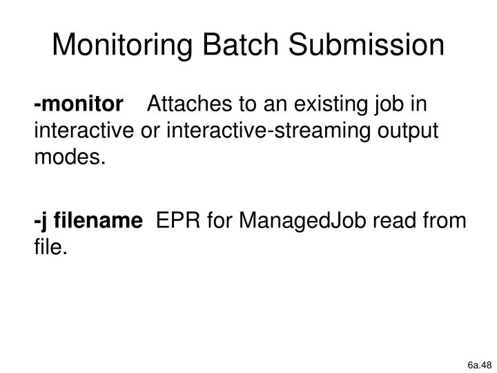 Monitoring Batch Submission