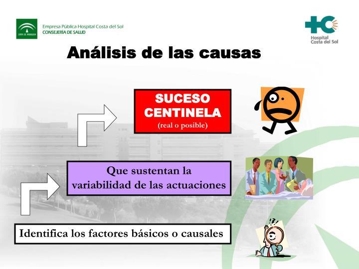 Análisis de las causas