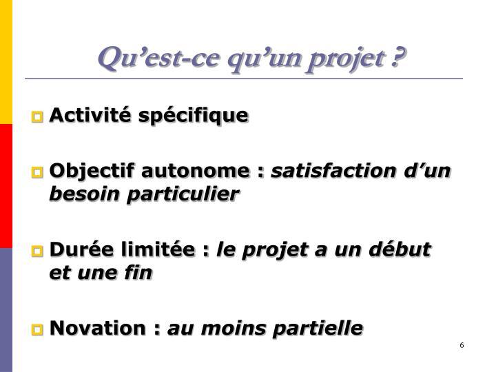 Qu'est-ce qu'un projet ?
