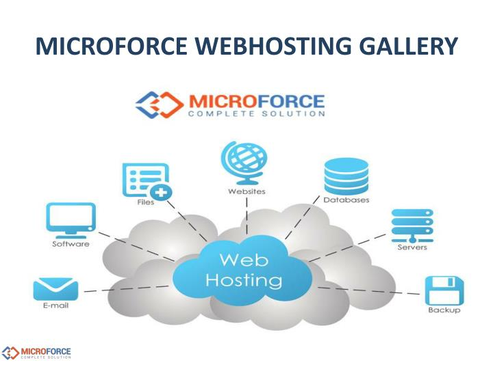 MICROFORCE WEBHOSTING GALLERY