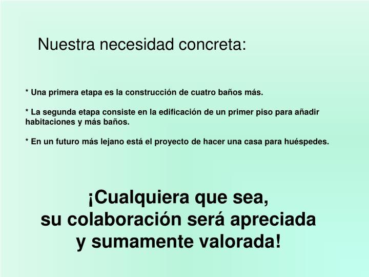 Nuestra necesidad concreta: