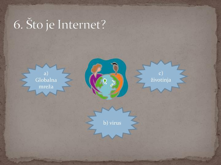 6. Što je Internet?