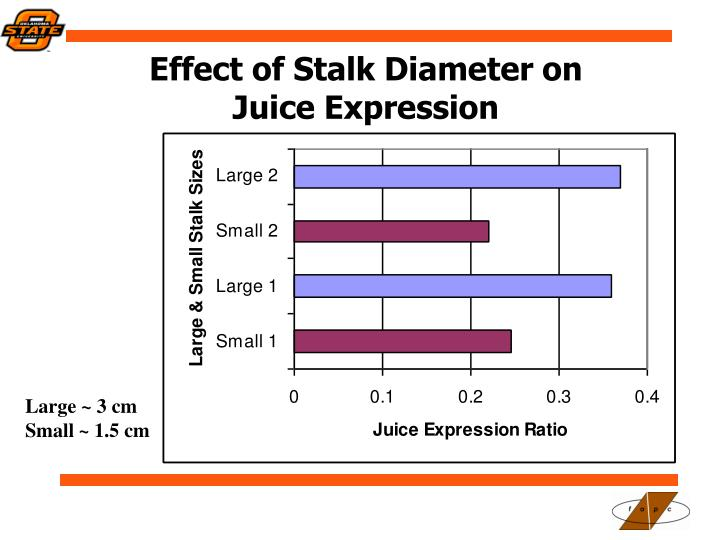 Effect of Stalk Diameter on