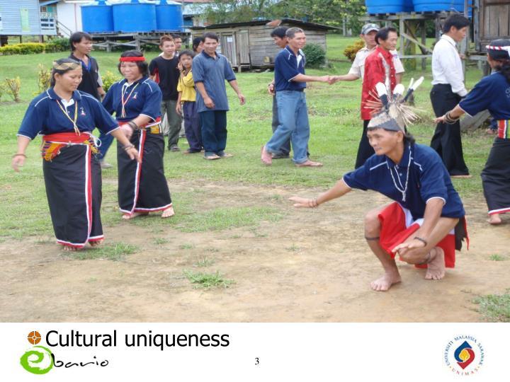 Cultural uniqueness