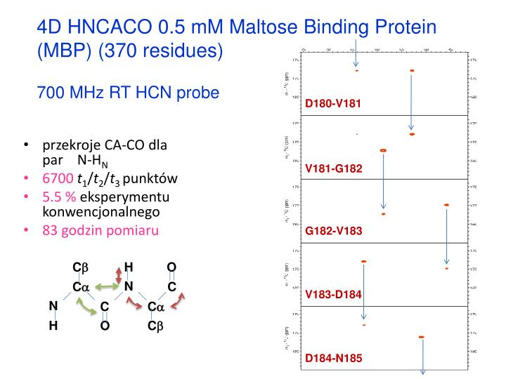 4D HNCACO 0.5 mM Maltose Binding Protein (MBP) (370 residues)