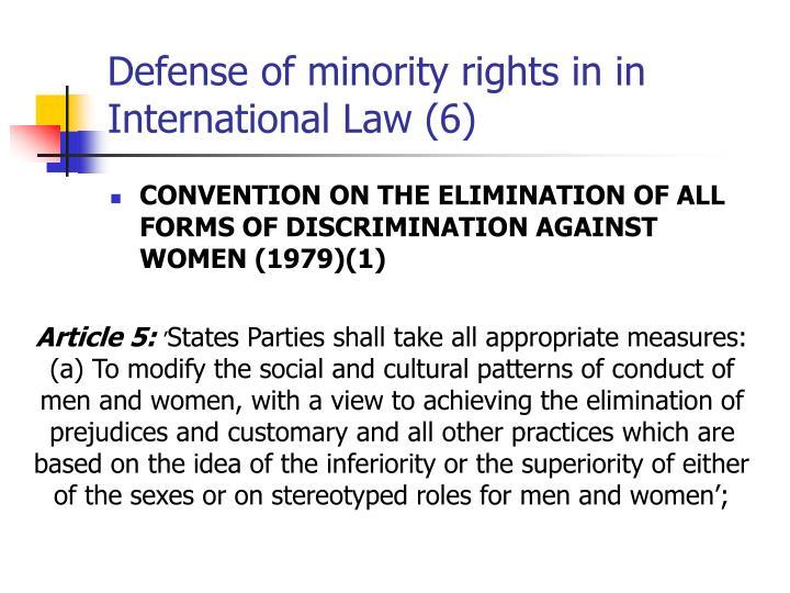 rights involving minorities essay
