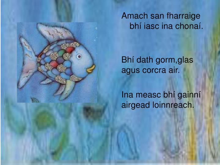 Amach san fharraige bhí iasc ina chonaí.