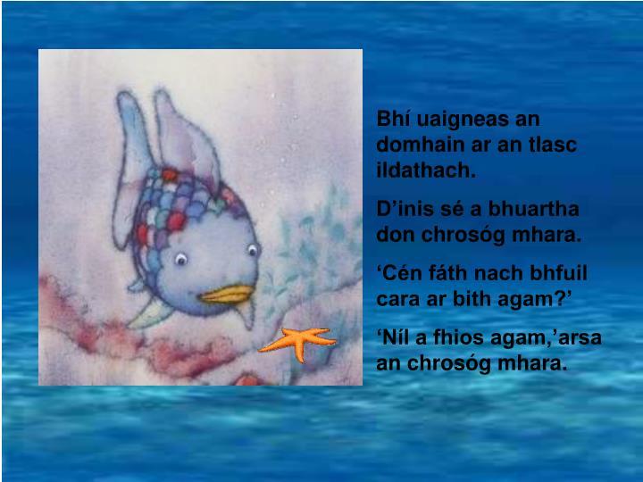 Bhí uaigneas an domhain ar an tIasc ildathach.
