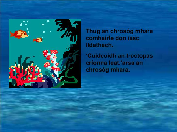 Thug an chrosóg mhara  comhairle don iasc ildathach.