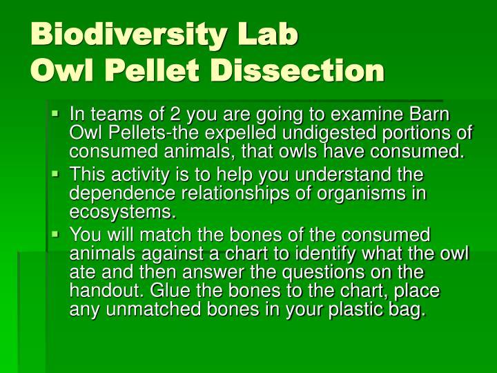 "Read ""Lab 3: Biodiversity"