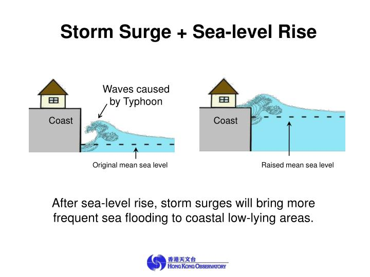 Storm Surge + Sea-level Rise
