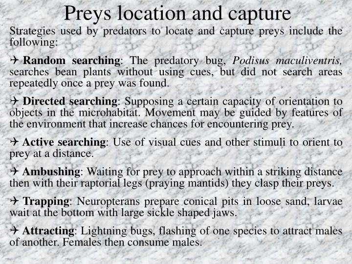 Preys location and capture