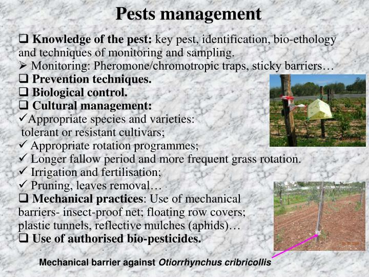 Pests management