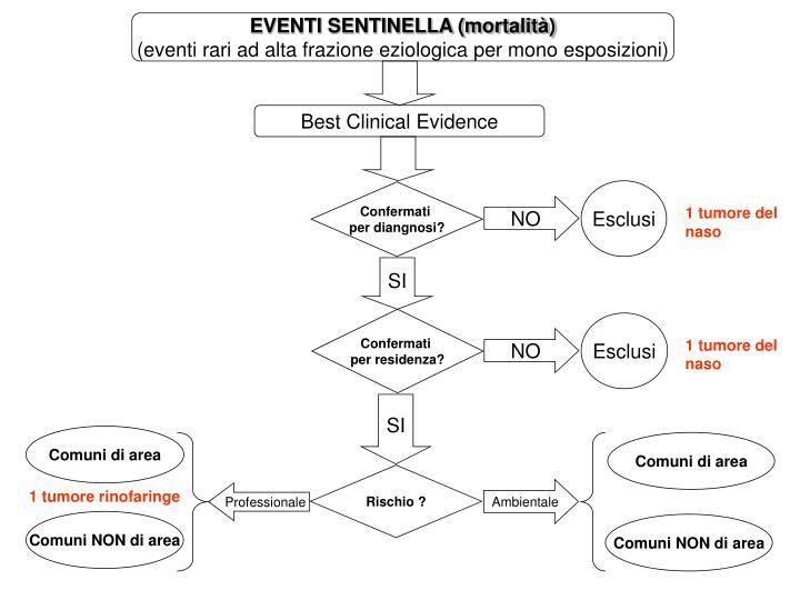 EVENTI SENTINELLA (mortalità)