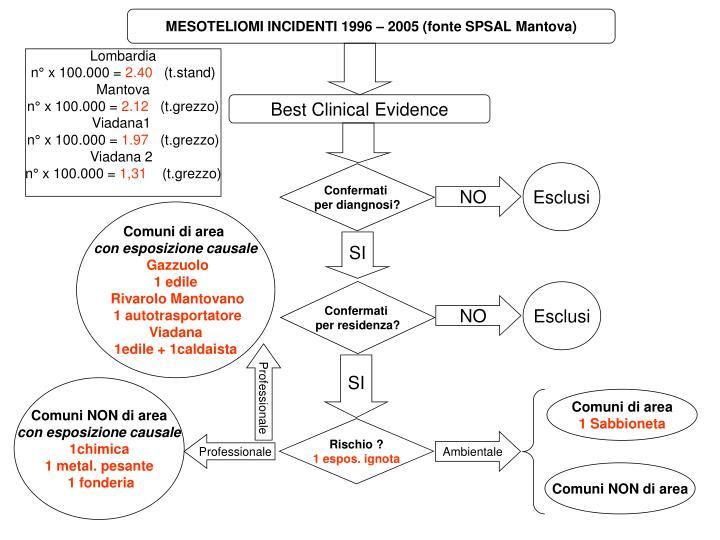 MESOTELIOMI INCIDENTI 1996 – 2005 (fonte SPSAL Mantova)