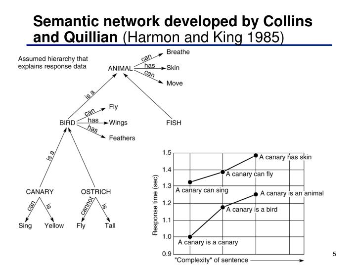 Semantic network developed by Collins and Quillian