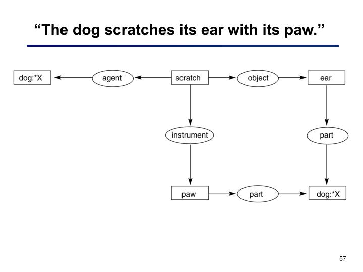 """The dog scratches its ear with its paw."""