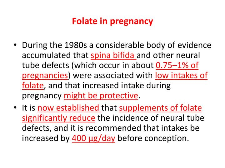 relationship between folate and neural tube defects detection