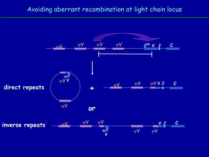 Avoiding aberrant recombination at light chain locus