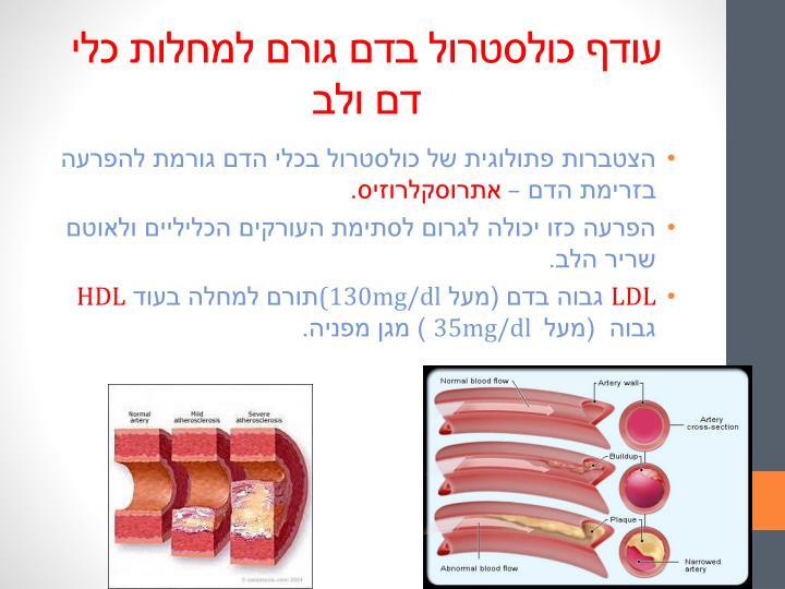 עודף כולסטרול בדם גורם למחלות כלי דם ולב