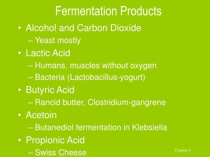 Fermentation Products