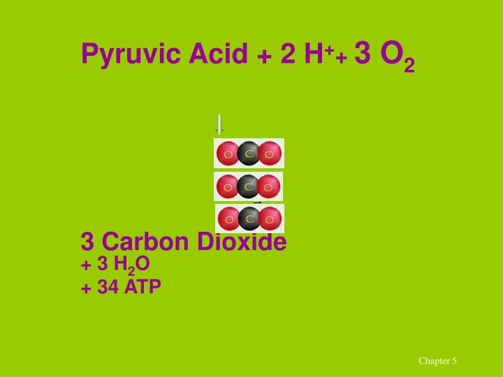 Pyruvic Acid + 2 H