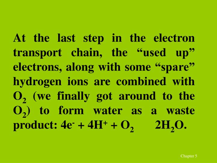 "At the last step in the electron transport chain, the ""used up"" electrons, along with some ""spare"" hydrogen ions are combined with O"