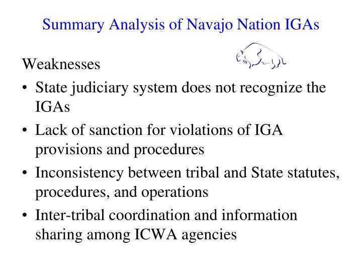 Summary Analysis of Navajo Nation IGAs
