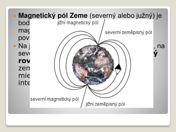 Magnetický pól Zeme