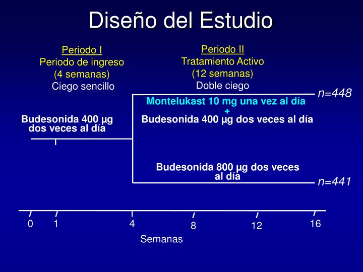 Periodo II