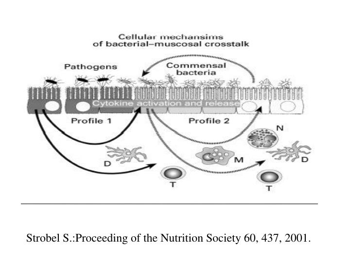 Strobel S.:Proceeding of the Nutrition Society 60, 437, 2001.