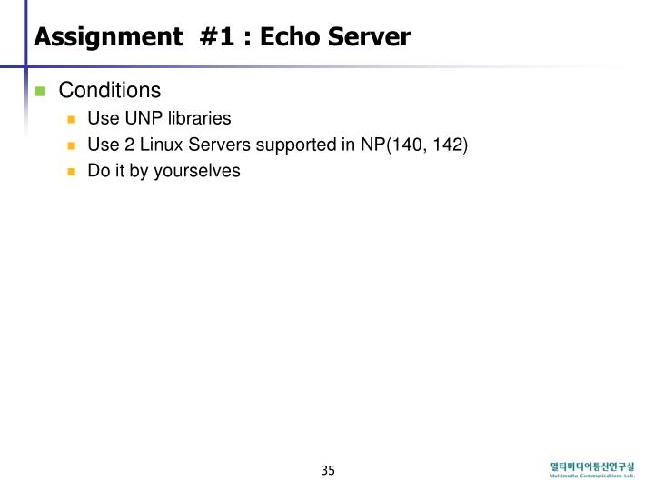 Assignment  #1 : Echo Server