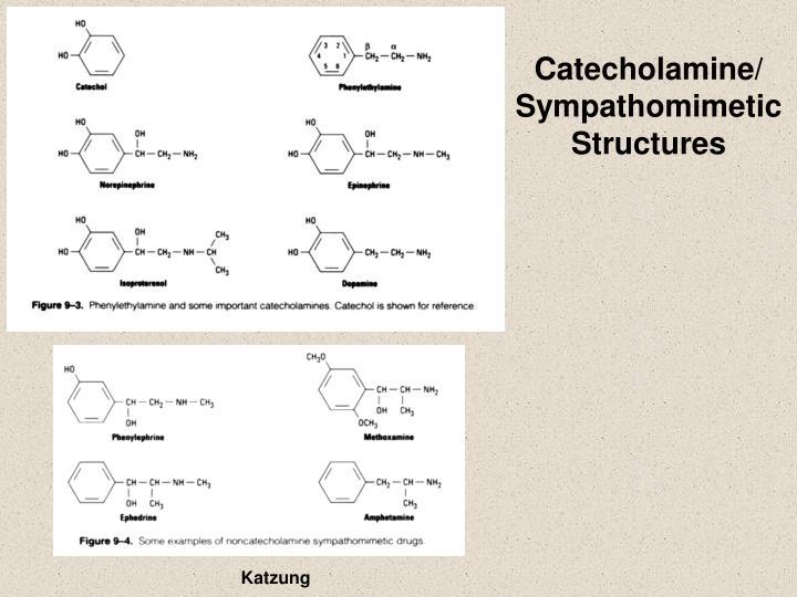 Catecholamine/