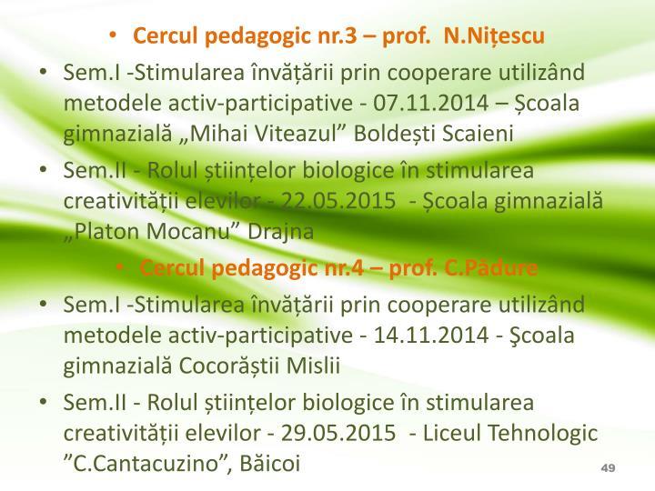 Cercul pedagogic nr.3 – prof.  N.Nițescu